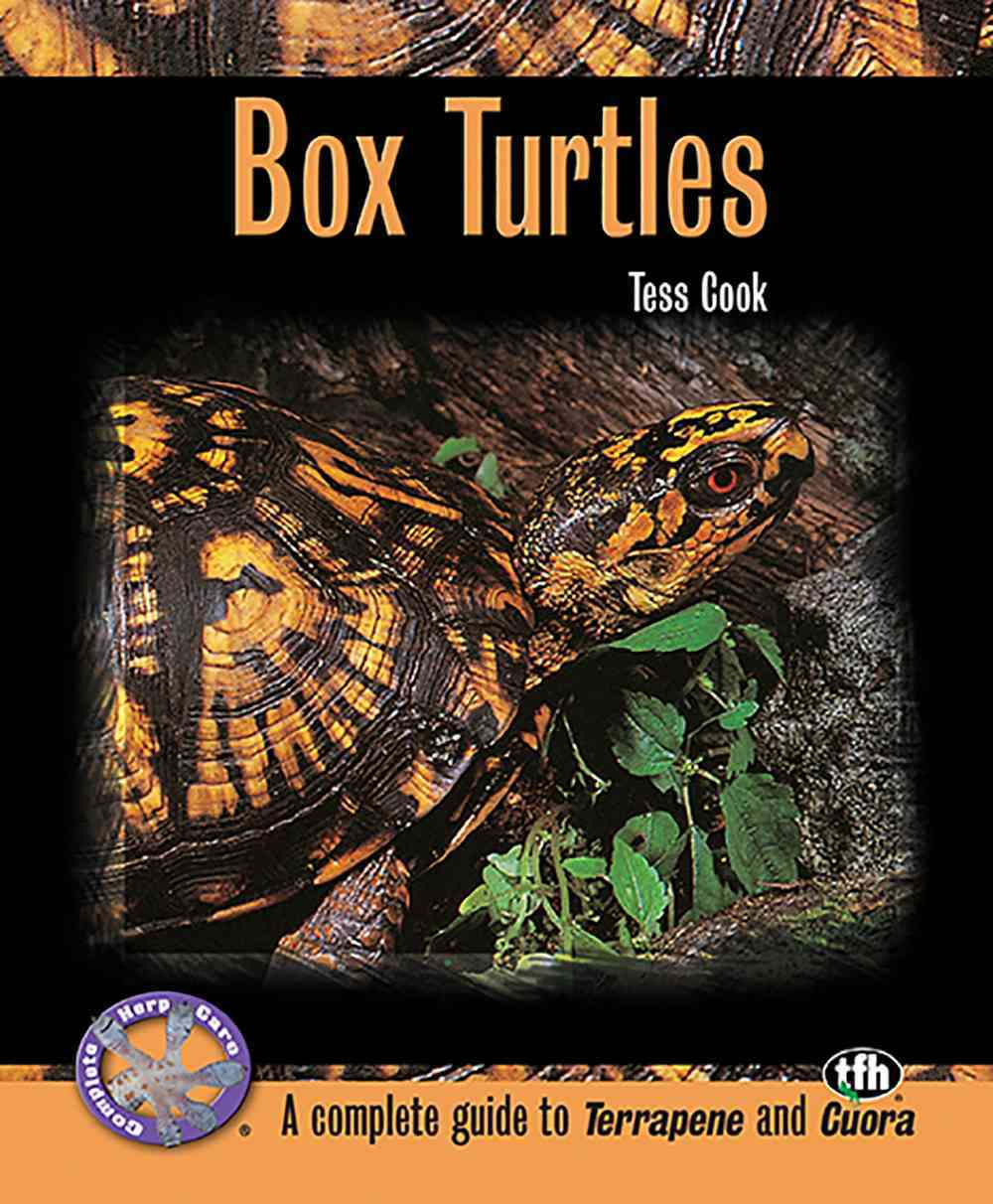 Box Turtles By Cook, Tess